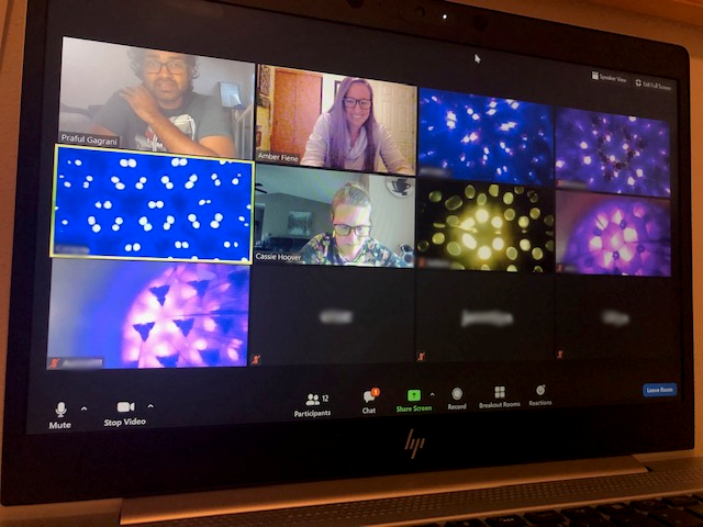 picture of a computer screen showing a Zoom meeting where most of the individual boxes are where the students' kaleidoscopes are being held up to the camera