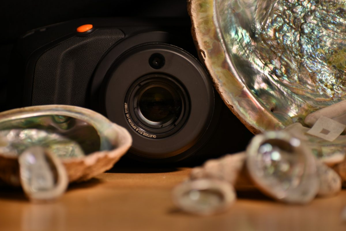 A camera and some iridescent shells